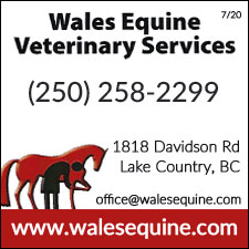 Panorama Vet Services